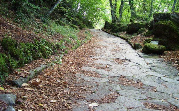 La bellezza di camminare in autunno