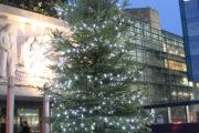 Il Natale dei Castelli… e dintorni Da Castel Gandolfo a Frascati a Monte Porzio, le principali iniziative natalizie dei Castelli