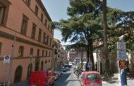 Frascati, riaperto Corso Italia dopo le verifiche sui cedri