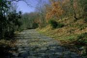 Una strada unica al mondo: la via Sacra di Rocca di Papa