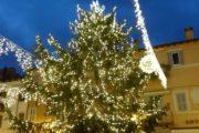 Castel Gandolfo: acceso nella piazza del borgo l'albero di Natale di 14 metri