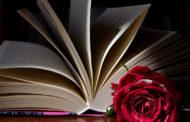 A breve, in libreria e in versione digitale, il primo romanzo di Eleonora Persichetti!