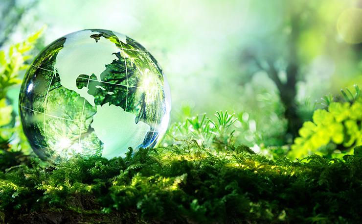 Primorapporto Fao sullo stato della biodiversità nel mondo