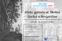 """""""Giornate dell'Archeologia"""" Visite Guidate al Ninfeo Dorico e al Ninfeo Bergantino"""