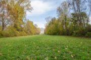 Il Parco regionale dei Castelli Romani compie 36 anni