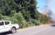 Campagna Antincendio Boschivo 2020