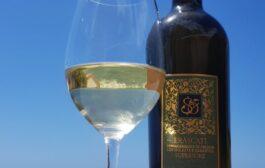 Vino Frascati, un convegno tecnico giuridico per approfondire la fase post Covid del settore vitivinicolo
